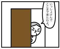 5256_2