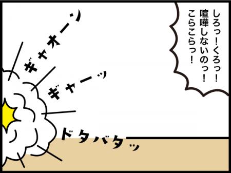 133_20201113113501