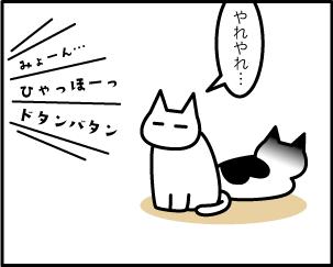 4_20200121210701