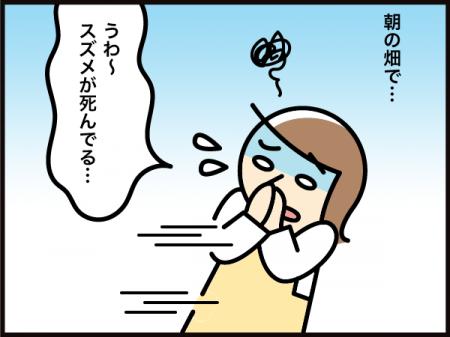 6211_20210621172001