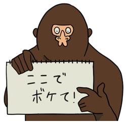 20150528_104313