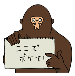 20151016_134301