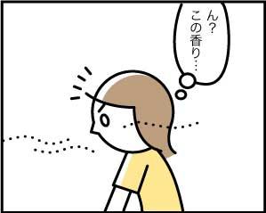 5251_2
